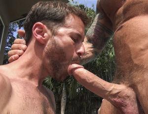 gay outdoor blowjob