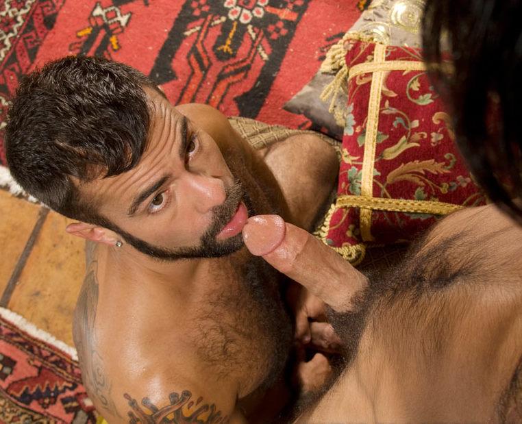 Top Rated Arabian Gay Porn